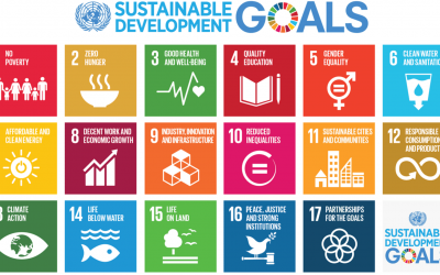 Top 10 learning resources for Global Sustainable Development Goals (SDGs) during Covid19 – Education and Development Solutions